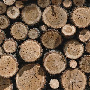 All Logs